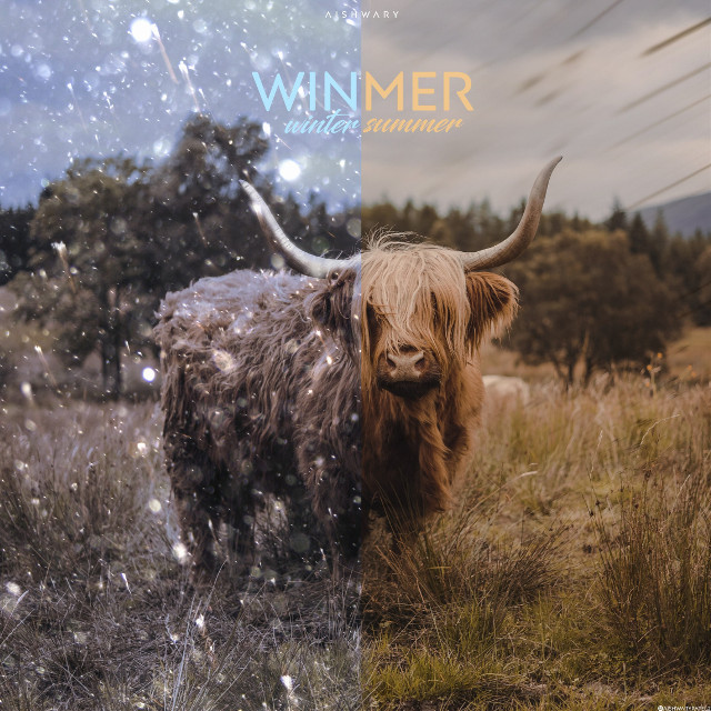 """""""Winmer"""" A day will come when we'll change season names #saveenvironment  #siwap See it with Aishwary Patel  #photoshop#photomanipulation#photoshopped#photoshopindia#photomanipulate#surreal#surrealism#surrealist#surrealstic#art#visuals#forest#animal#winter#summer#season #freetoedit"""