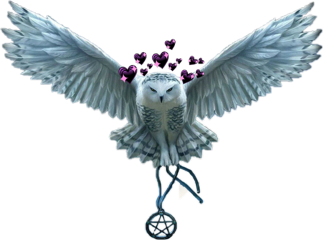 owlcontest diy loveyourself freetoedit scowl