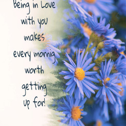 freetoedit quotes morningquotes love flower