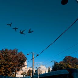 freetoedit aestetic aestetichs sky skyblue