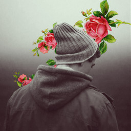 roses artsy freetoedit