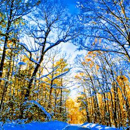 winterscape winter snow pcroads roads