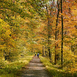 freetoedit outdoorphotography bicyclists autumnfeels