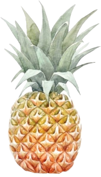pineapple freetoedit