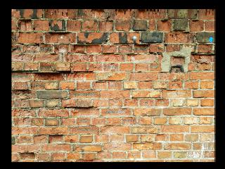 background wallbackground brickwallbackground wall bricks freetoedit