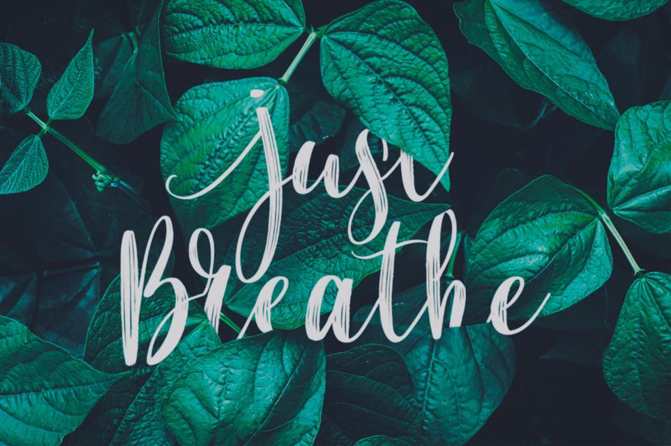 Just Breathe 🍃 . . . #art #madewithpicsart #manipulation #photography #nature #leaves #beauty #fotoedit