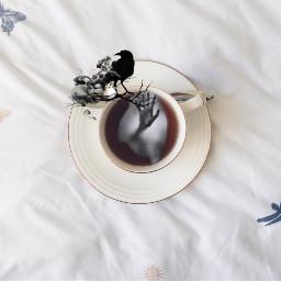 freetoedit ircteatime teatime