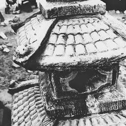 pagoda forest desert serenity peace