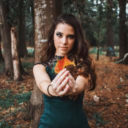 freetoedit autumncolors autumnleaves autumnfeels autumm