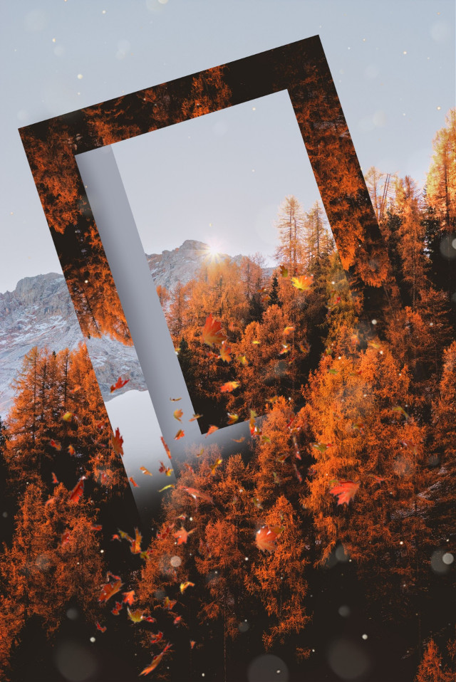 Image from @freetoedit gallery #photomanipulation #upsidedown #drawtools #layers #surreal #forest #shapes