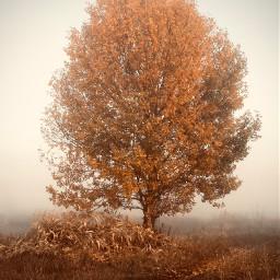ukraine autumn