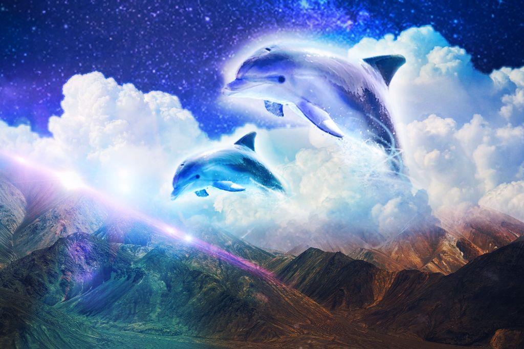 #freetoedit #dolphins #aesthetic #clouds #3dart #interesting #art #sky #summer #photography #beach #water #purple #remix