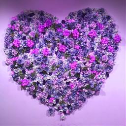 freetoedit flower heart purple