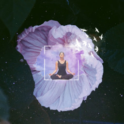 freetoedit flower fantasy meditation