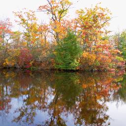 freetoedit naturephotograpy lake reflections serenity