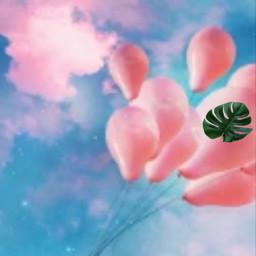 srcniche niche ballon freetoedit