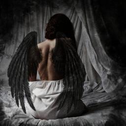 freetoedit wings wingsofanangel black smoke