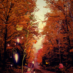 trees magical forest fairy lomoeffect freetoedit