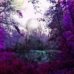 freetoedit trees park hueeffect purple
