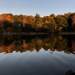 freetoedit reflection fall autumn pond bluehour
