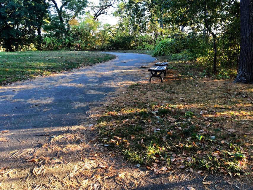 #freetoedit #benches #fall #autumn #footpath #trail #goldenhour #quiettime #peaceful