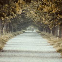 freetoedit photography background roads italy🇮🇹