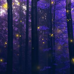 freetoedit purple forest tree nature dark darkness night lights fireflies fly lightning picsarteffects myedit madewithpicsart