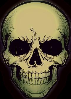 freetoedit halloween spooky skeleton skull
