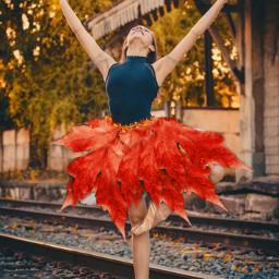 freetoedit top papicks dance ballerina ircfallmood