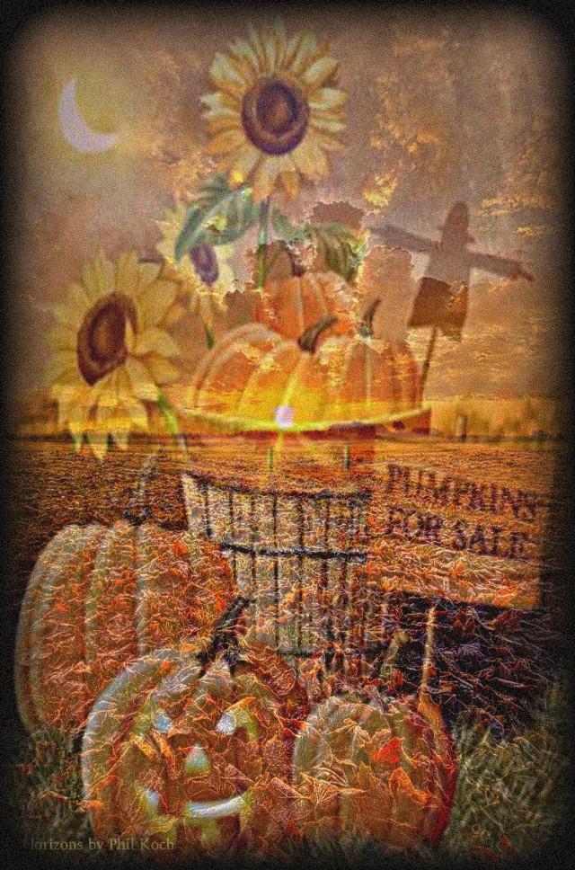 #freetoedit #remixed #fall #pumpkinpatch  #pumpkins #autumn #sunflowers #flowers #bucket #jackolantern #halloween  #doubleexposure
