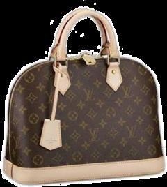 purse fancy brown freetoedit