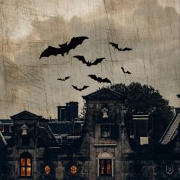freetoedit srcbats bats