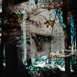 freetoedit lynnbrewer madewithpicsart surreal sleep