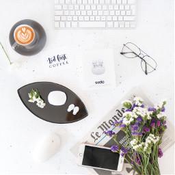 interesting coffee sudio productphotography tamarast freetoedit