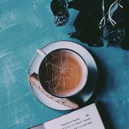 freetoedit web spiderweb tea old