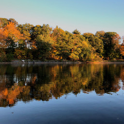 foliage fall autumn reflection goldenhour freetoedit