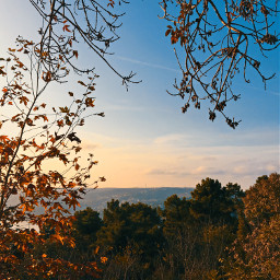 photography photographer picoftheday travel nature autumn landscape followme interesting travel sky myedit istanbul freetoedit