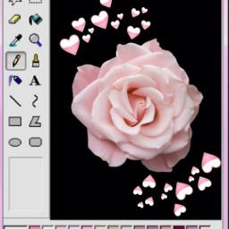 freetoedit error aestetic rosesarebeautiful pink
