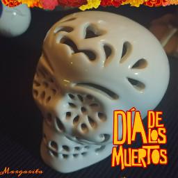 freetoedit diadelosmuertos dayofthedead skull marigold
