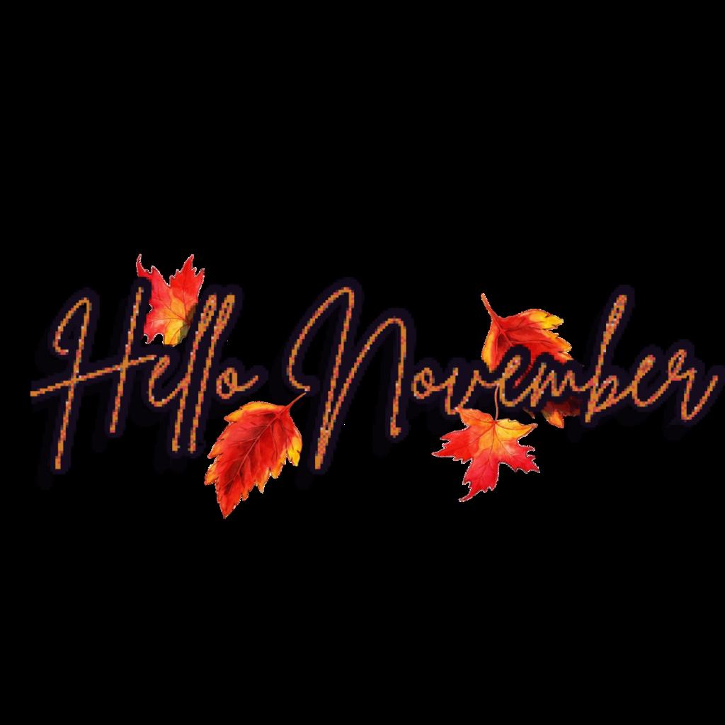 Hello November*Text