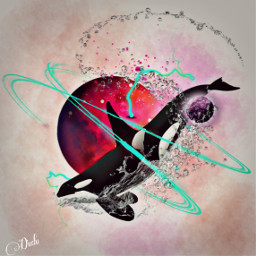 freetoedit tumblr ballena orcawhale planetas