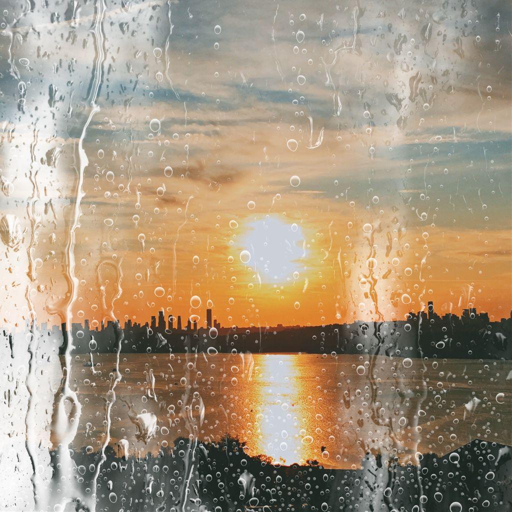 #midnight #sunny 🌹😊🙏🏻 #freetoedit