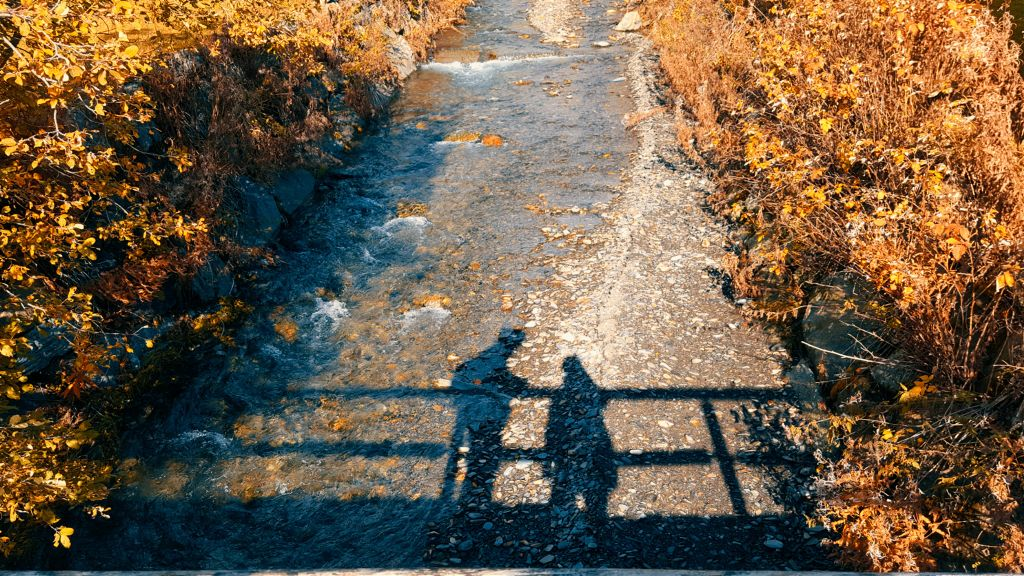 #photooftheday #shadows #bridge #love #river #autumn