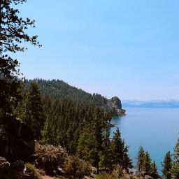 tahoe lake nature tree bush freetoedit