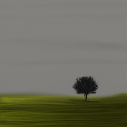 lonelytree solo alone tree scenery dcalonelytree
