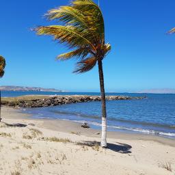 home beach blue palmbeach relax