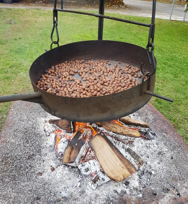#freetoedit #chestnuts #caldarroste #castagne #myphoto #dolci tradizioni