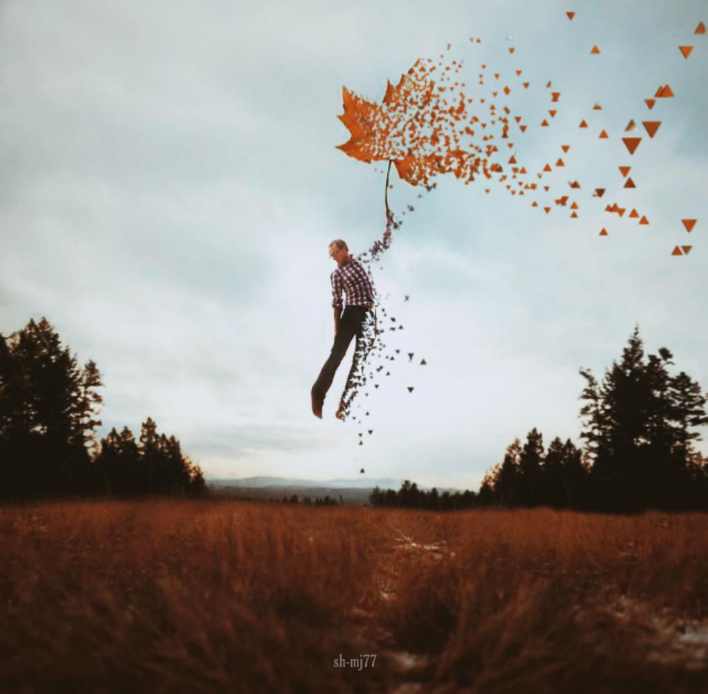 #freetoedit#disperationtool#man#leaf#standing#nature#be_creative#onair