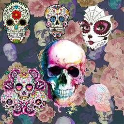 skullhead freetoedit ecskullseverywhere skullseverywhere DiaDeMuertos diadelosmuertos