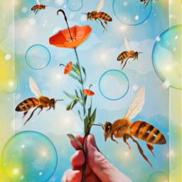 freetoedit umbrella surrealism flowers bees